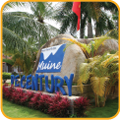 Muine De Century Beach Resort & Spa